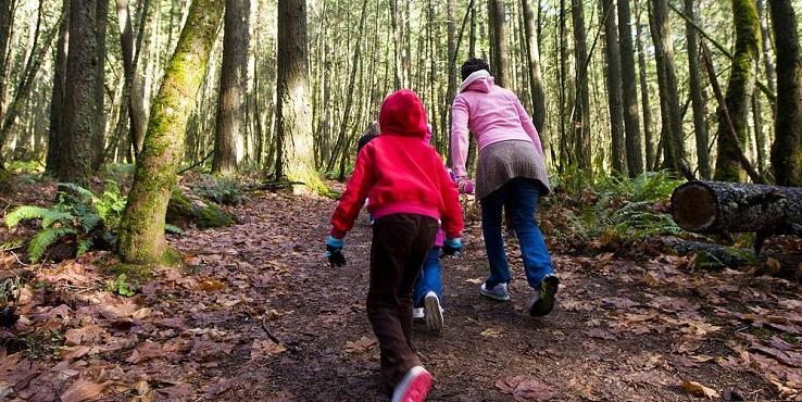 Familienurlaub Bayrischer Wald