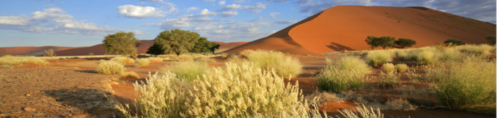 Rundreise Namibia Canyons and Deserts standard