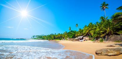 Sri Lanka Reise Dezember
