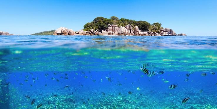 Tauchurlaub Seychellen
