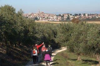 Vom grünen Herz zur blauen Küste: Genusswandern in Istrien