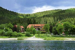 Wellness Hotel Auerhahn