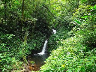 Naturschätze Costa Ricas - Kleingruppenreise