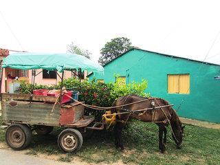Radtour durch Kubas grünen Westen