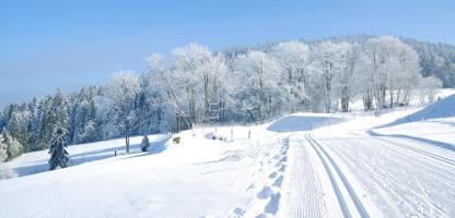 winterurlaub im harz skiurlaub g nstig buchen bei fti. Black Bedroom Furniture Sets. Home Design Ideas